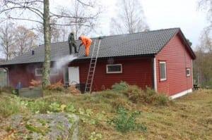 All mosen på taket er borte!