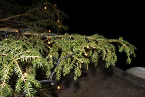 Nye julatrelys